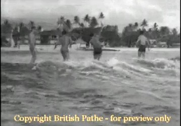9b5cd3742d SV Hawaiians seated on board skimming through water. MV Group of Hawaiians  on board. One girl clambers on partner's shoulder. MV Back view surf riders.